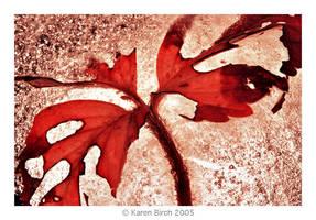 Iced Strawberry Leaf by karenbirch