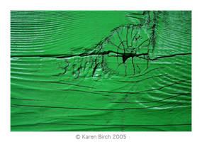 Green Wood by karenbirch