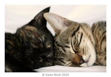 Two Sleepy Babies by karenbirch