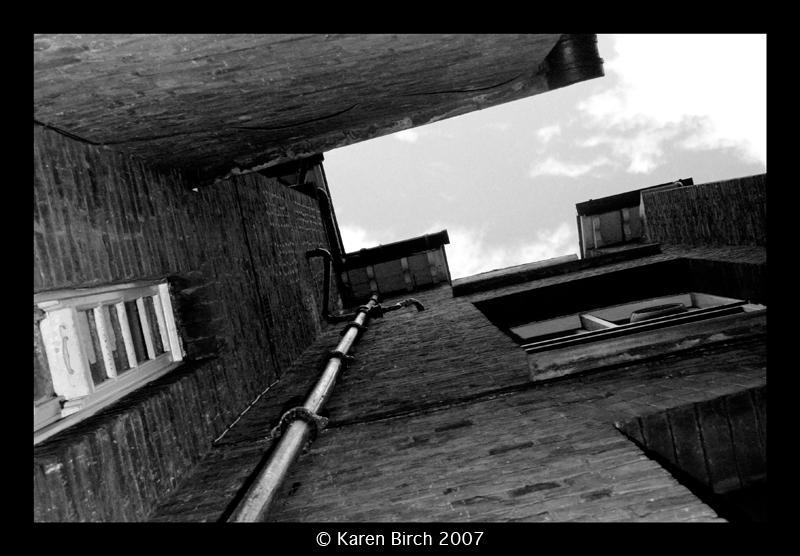 Vertigo by karenbirch