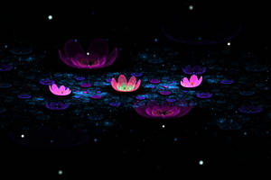 The Flower Duet by Myreena