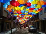 Colourful Life by Davinsky