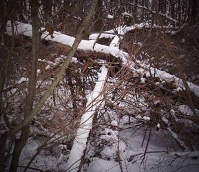 Snow Cross by Alt-Reality