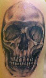 Skull WIP by Dripe