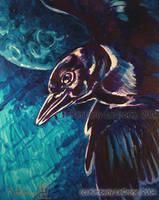 Crow's Flight by Dreamspirit