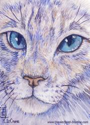 Opal Watercolor ACEO by Dreamspirit