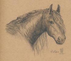 Oberon Character Sketch by Dreamspirit