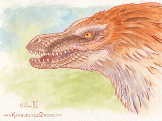 Raptor by Dreamspirit