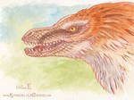 Raptor by Dreamspirit