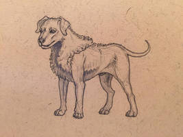 30 Day Story-Sketch Challenge: Day 18: Wulfhound by Dreamspirit