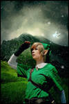 The Legend of Zelda - Link by RoteMamba
