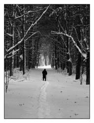 Winter Fun by robcwilliams