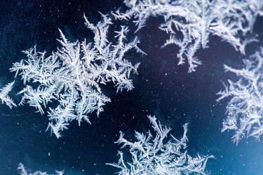 Snowflakes by robcwilliams