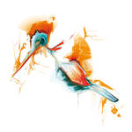 Bird of Summer by Uzi-Muzi
