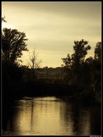 Golden river by spirik