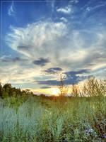 Vivid scenery by spirik