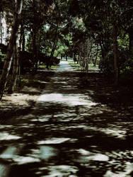 shadow play by shmootik
