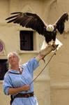 On Eagles Wings by atistatplay