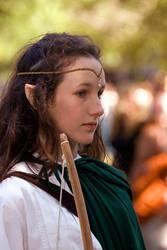 The Wood Elf by atistatplay