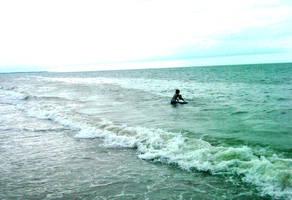 The Beach II by mickhummel