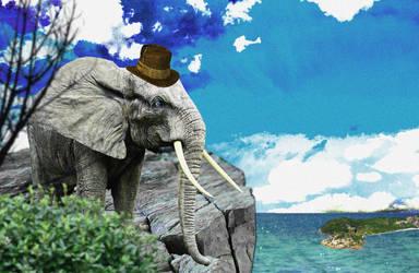 Elephant by mickhummel