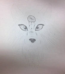 Wolf Sketch by multifandomed25