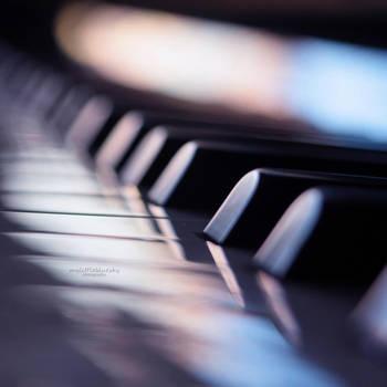 5.52 - Black keys. by mylittlebluesky