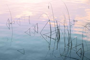 Pastel. by mylittlebluesky