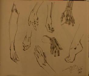 Hands y Feet by sattch
