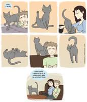 Cat Butt by FindChaos