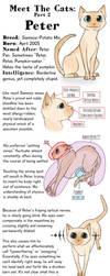 Meet the Cats: Part 2 by FindChaos