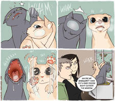 ChaosLife: Frustrated Felines by FindChaos