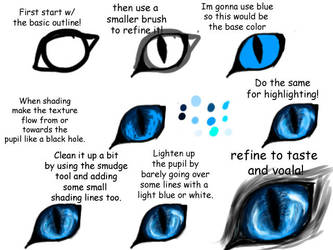 Realistic Feline/ Canine Eye Tutorial by Imaginer-Fox