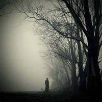 silence III by foart