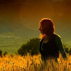 Golden Wind by foart
