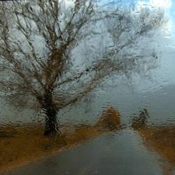Rain Drops by foart