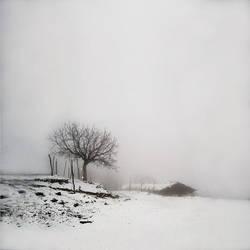 fog and snow by foart