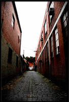 The Alley. by Panic-Balcony