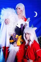 Inuyasha and Sesshomaru by nandonagisa