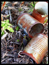 Rusted Cans I by JennyLove