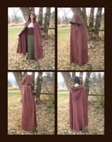 Wayfarer's Cloak by aelthwyn