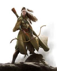Elf Warfare Cover Art by wraithdt