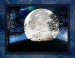 Moon Fox lead pic 2 by reedymanedkelpie