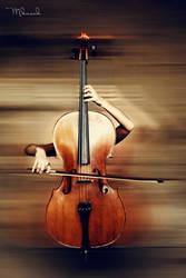 cello body by mustafakucuk