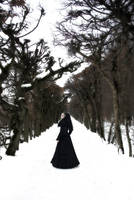 Winterserenade II by FleurDelice