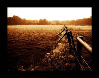 frozen field by Testhament