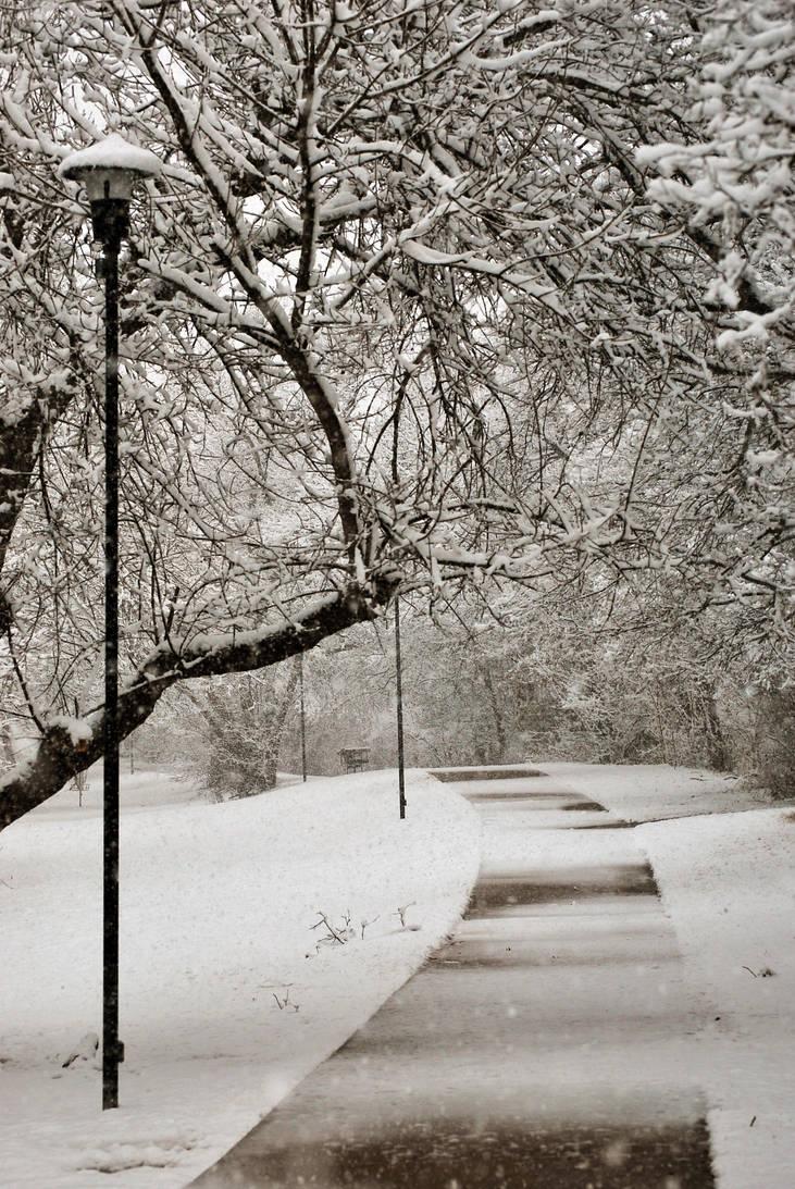 Snowy Path by SublimeBudd