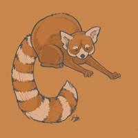 Red Panda by Kata