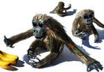 Orangutan by SeanAvery