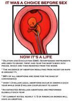 Abortion Propaganda Poster by Sabor7